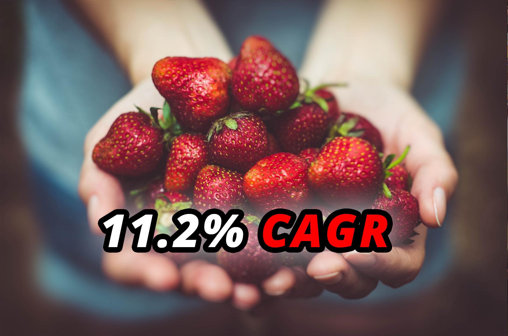 Settore alimentare guida la crescita del mercato MES, $18,067.9 Mln nel 2025